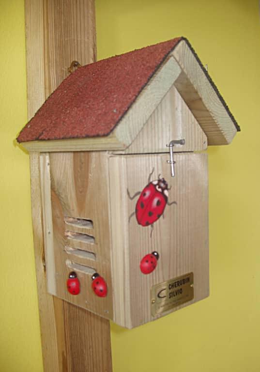 Casetta per coccinelle in legno