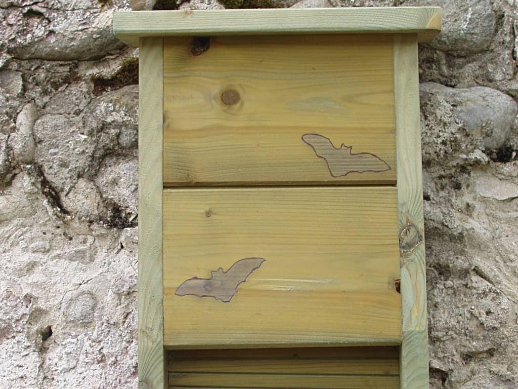 Casette per Pipistrelli