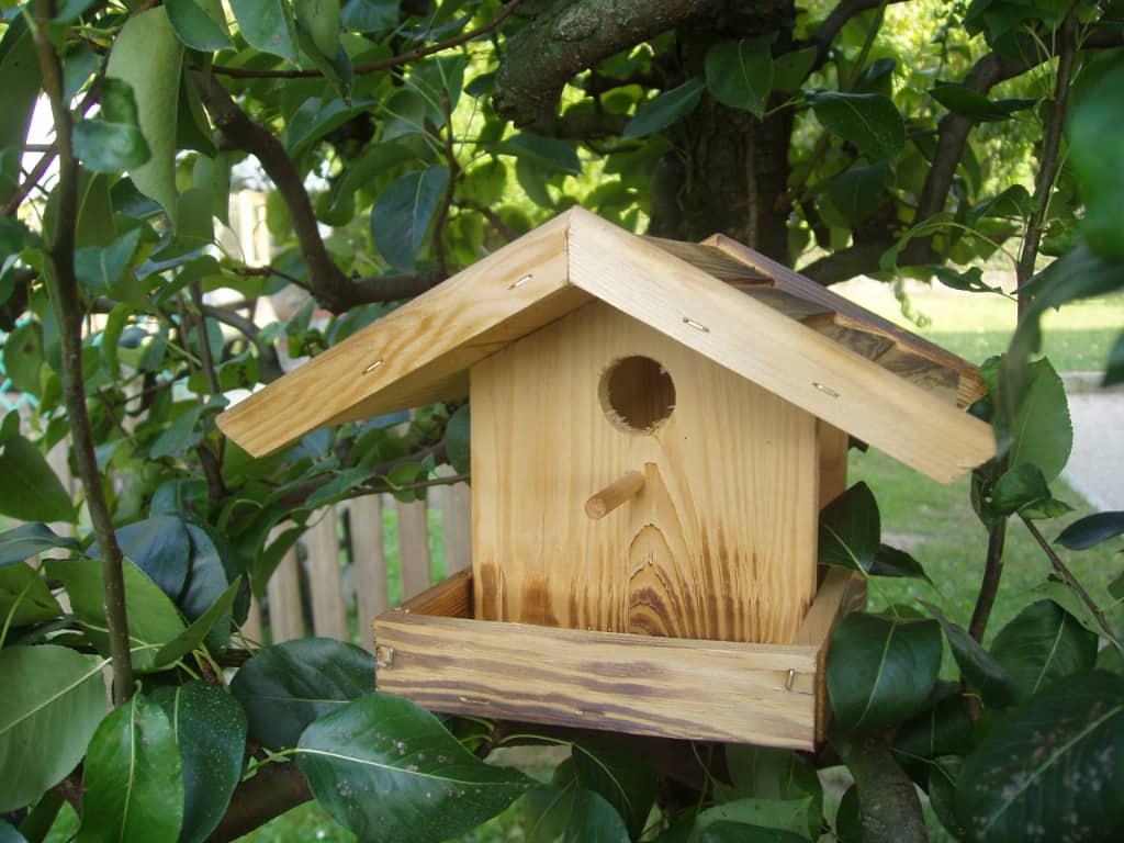 Casette in legno per Uccelli